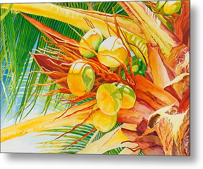 Under The Coconut Palm Metal Print by Janis Grau
