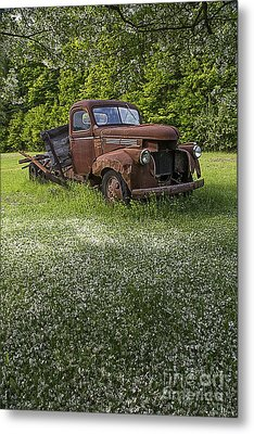 Under The Crab Apple Tree Metal Print by Edward Fielding