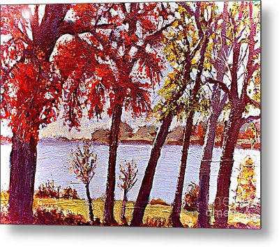 Under The Maple Along The Charles River Metal Print by Rita Brown
