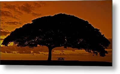 Under The Monkeypod Tree Metal Print by Brian Governale