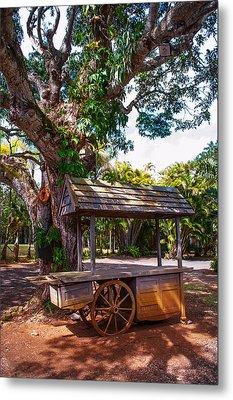 Under The Shadow Of The Tree. Eureka. Mauritius Metal Print by Jenny Rainbow