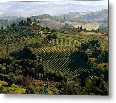 Under The Tuscan Sun Metal Print by Ira Shander