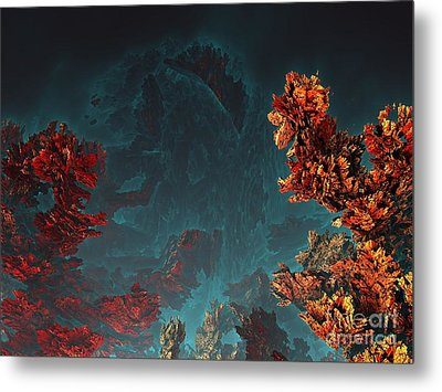 Underwater 5 Metal Print by Bernard MICHEL