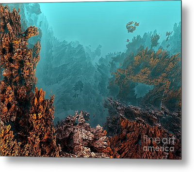 Underwater 6 Metal Print by Bernard MICHEL