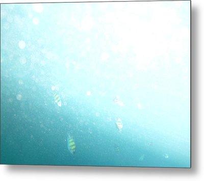 Underwater - Long Boat Tour - Phi Phi Island - 01135 Metal Print