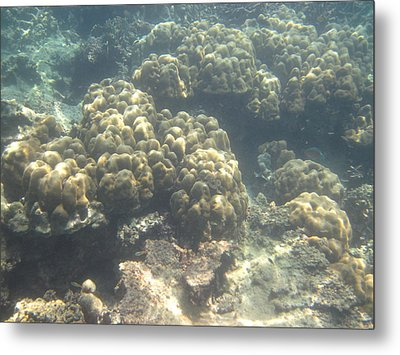 Underwater - Long Boat Tour - Phi Phi Island - 011379 Metal Print by DC Photographer