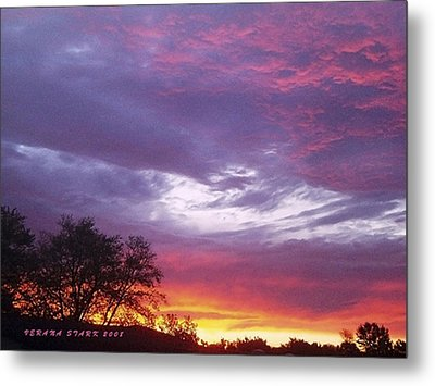 Unforgettable Majestic Beauty Metal Print