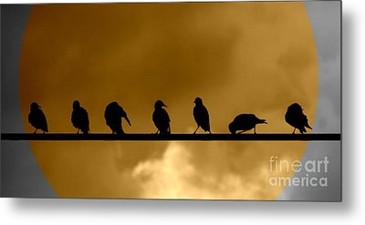 Metal Print featuring the photograph Unity Is Strength by France Laliberte
