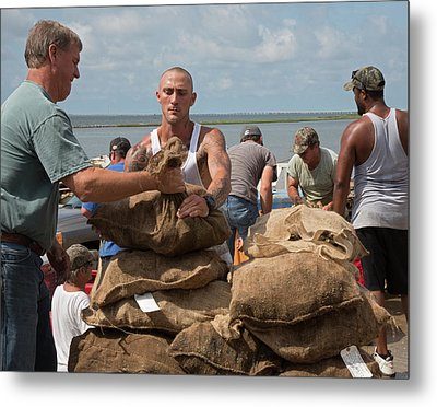 Unloading Harvested Oysters Metal Print by Jim West