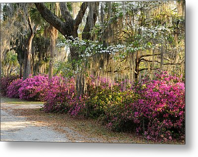 Metal Print featuring the photograph Unpaved Road In Spring by Bradford Martin