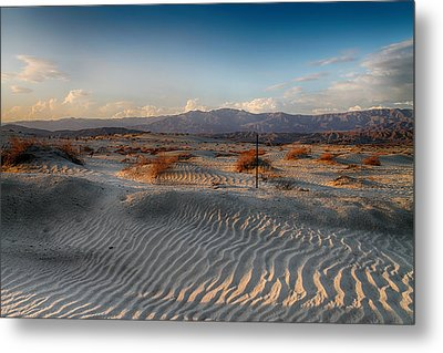 Unspoken Metal Print by Laurie Search