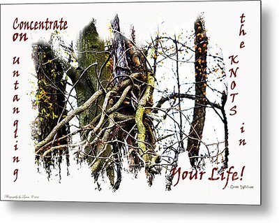 Untangle Your Knots Metal Print by Gena Weiser