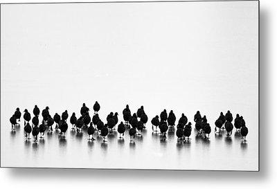 Untitled Metal Print by Yordan Vasilev