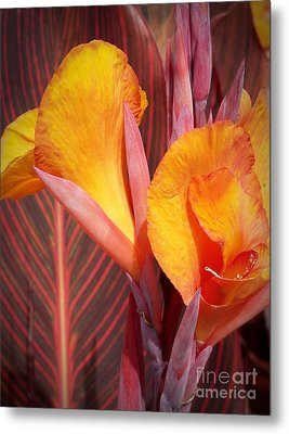 Up Close And Personal Metal Print by Chalet Roome-Rigdon