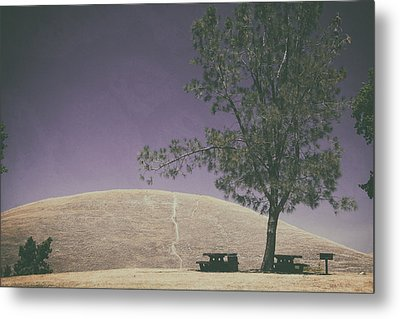 Up Into The Darkening Sky Metal Print by Laurie Search