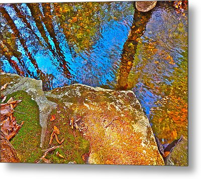 Upland Trail 2014 106 Metal Print