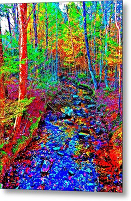 Upland Trail 2014 221 Metal Print