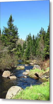 Upstream Metal Print by Will Boutin Photos