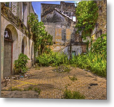 Metal Print featuring the photograph Urban Jungle by Kandy Hurley