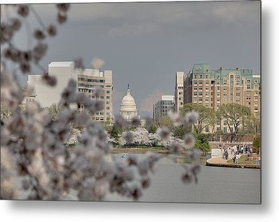 Us Capitol - Cherry Blossoms - Washington Dc - 01138 Metal Print by DC Photographer