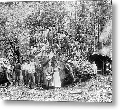 Us Rural Settlement Metal Print by Library Of Congress