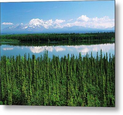 Usa, Alaska, Willow Lake And Mt Metal Print