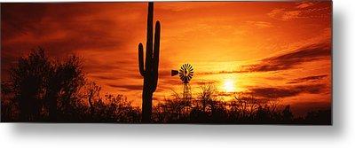 Usa, Arizona, Sonoran Desert, Sunset Metal Print by Panoramic Images