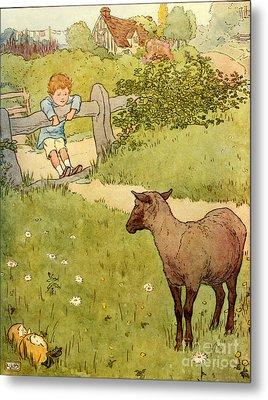 Usa Baa Baa Black Sheep  Book Plate Metal Print