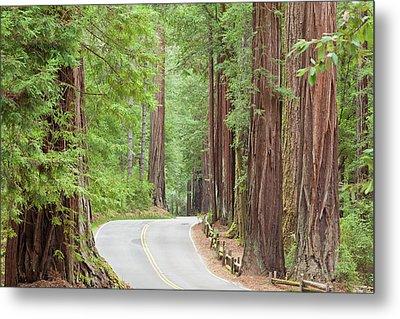 Usa, California View Of Road Metal Print