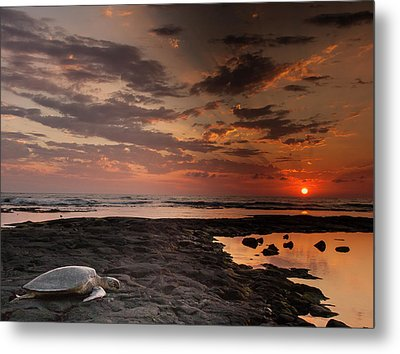 Usa, Hawaii, Honokohau Bay Metal Print by Jaynes Gallery