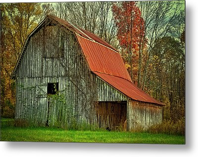 Usa, Indiana Rural Landscape Metal Print by Rona Schwarz