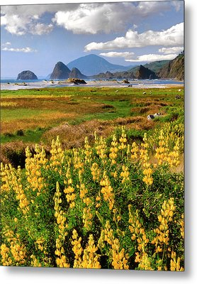 Usa, Oregon, Ophir Metal Print by Jaynes Gallery