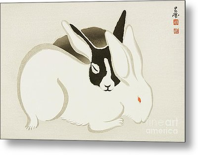 Usagi Metal Print by Pg Reproductions
