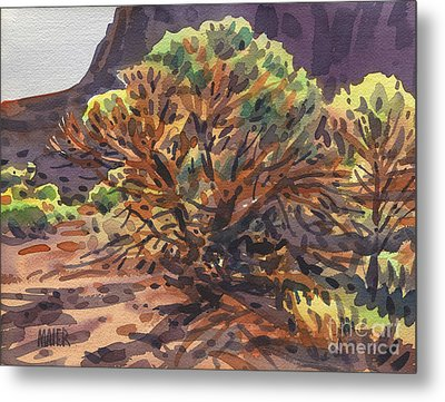 Metal Print featuring the painting Utah Juniper by Donald Maier