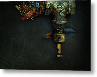 V125 And The Meaning Of Life Metal Print by Rebecca Sherman