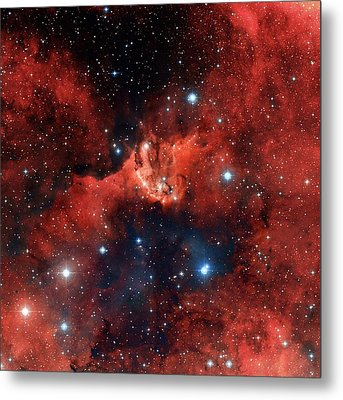 V1318 Cygni Star Cluster Metal Print