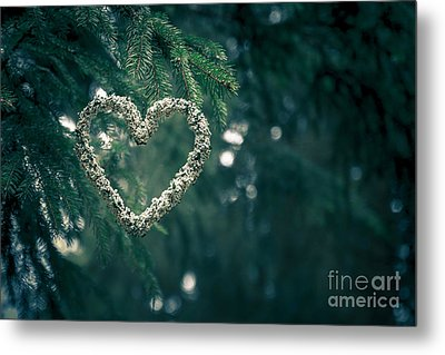 Valentine's Day In Nature Metal Print by Andreas Levi