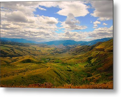 Valley In Northern Idaho Metal Print by Larry Moloney