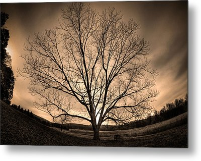 Valley Of Promise Metal Print by Mark Six