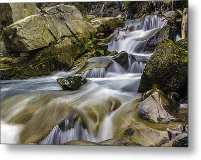 Van Trump Creek Mount Rainier National Park Metal Print by Bob Noble Photography