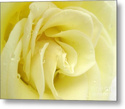 Vanilla Swirl Metal Print by Patti Whitten