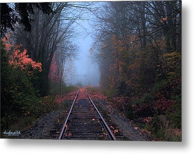 Vanishing Autumn Metal Print by Sarai Rachel