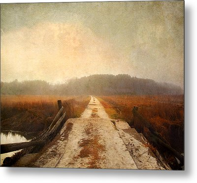 Metal Print featuring the photograph Vanishing Point by Karen Lynch