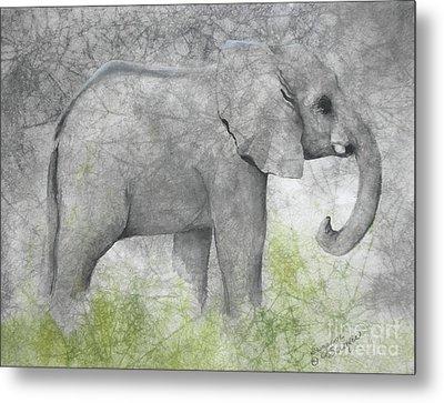 Vanishing Thunder Series-baby Elephant II  Metal Print by Suzanne Schaefer