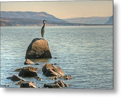 Metal Print featuring the photograph Vantage Point by Jeff Cook