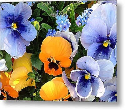 Metal Print featuring the photograph Various Violets by Gabriella Weninger - David