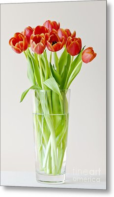 Vase Of Tulips Metal Print by Dee Cresswell