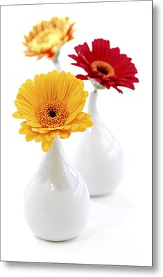 Vases With Gerbera Flowers Metal Print