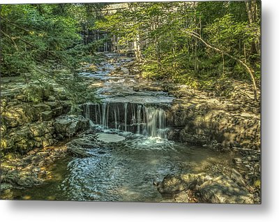 Metal Print featuring the photograph Vaughan Woods Stream by Jane Luxton