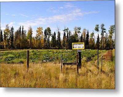 Metal Print featuring the photograph Vegetables For Sale by Cathy Mahnke